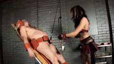Horny Stallion Gets Tied Down While A Hot Chick Punishes Him