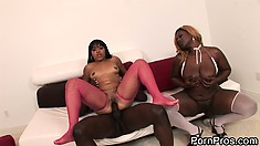One big cock to satisfy horny ebony sluts Satin Lace and DeCollecter