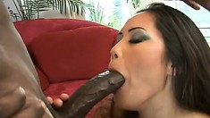 Marvelous Oriental babe with big boobs Jessica Bangkok loves them black and huge