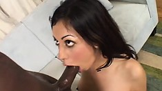 Adorable brunette with a fabulous booty Kelly Divine can't resist a black cock