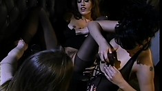 Horny brunette trio in lingerie lick a lot of puss and catch it all on video