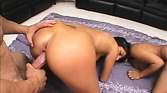 Cock-hungry sluts with perky boobs love handling big pistons