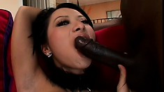 Petite Asian screams with pleasure while getting rammed by a hung black guy