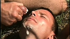 Love in the fields under the sun with gay cock sucking and ass banging