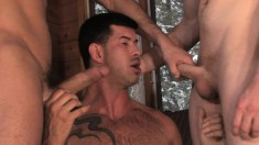 Wild gay friends indulge in intense sucking and fucking in the cabin