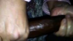 Amateur POV blowjob interracial scene
