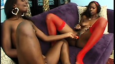 Taylor and Hydie are two black lezzies rocking the bodies that will make your mouth water